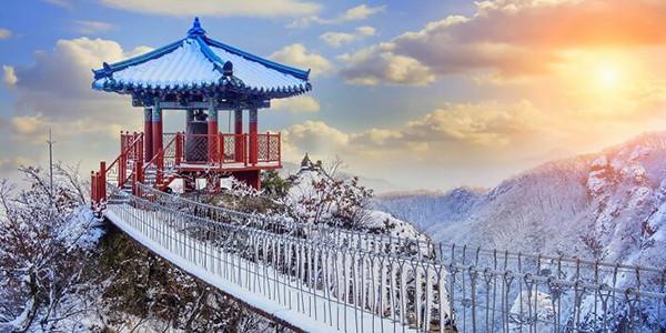Paket Tour 3N5D SPECIAL WINTER KOREA + ENJOY SKI