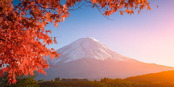 Paket Tour 6H/4M - TOKYO - MT. FUJI + YOKOHAMA